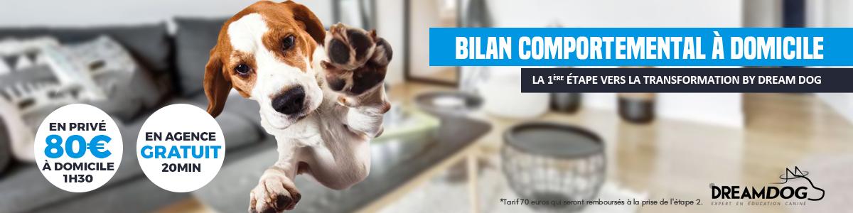 Bannière_Bilan